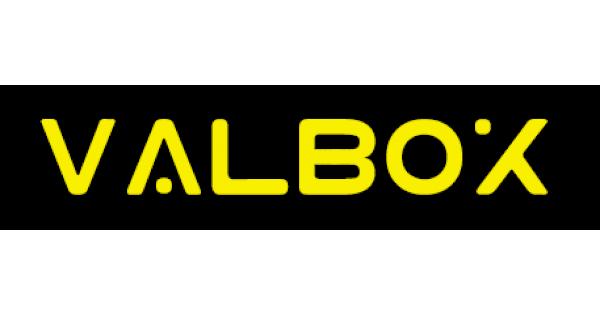 ValBox -Чехол, корпус, брелок для авто сигнализации.